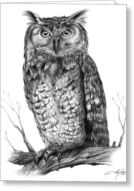 Eagle Drawing Greeting Cards - Eagle Owl Greeting Card by Dale Jackson