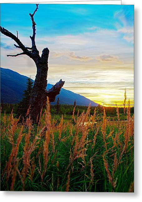 Nature Center Greeting Cards - Eagle River Sunset Greeting Card by Kyle Lavey