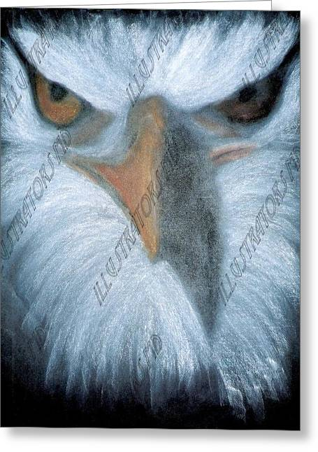 Eagles Pastels Greeting Cards - Eagleface Greeting Card by Daniel Woo