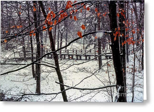 Early Snow Greeting Card by Bob Phillips