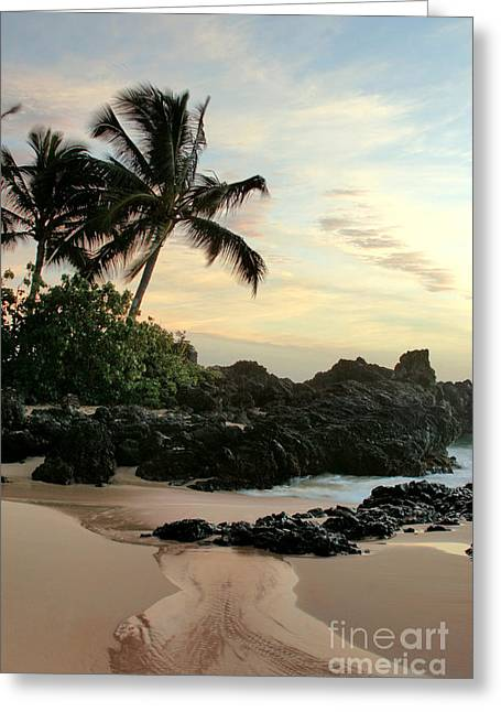 Tropical Island Greeting Cards - Edge of the Sea Greeting Card by Sharon Mau