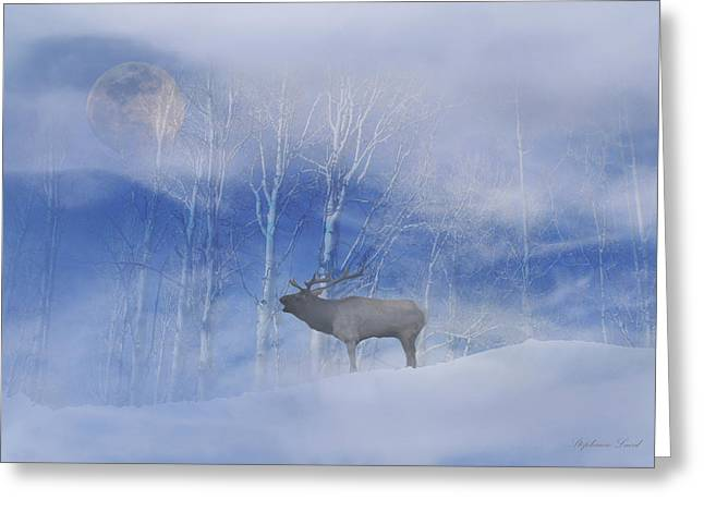 Nature Scene Greeting Cards - Elk and Moon Greeting Card by Stephanie Laird