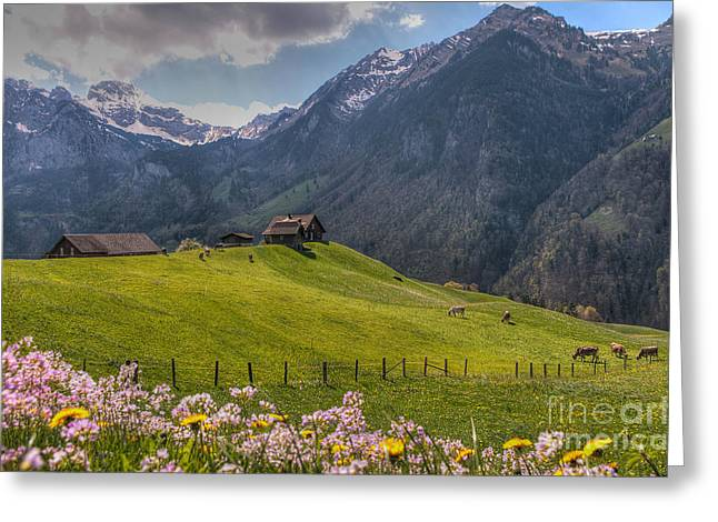 Caroline Pirskanen Greeting Cards - Engelberg Valley Greeting Card by Caroline Pirskanen