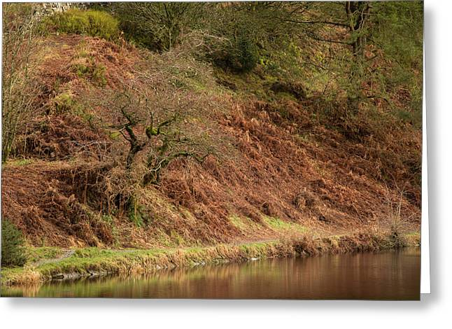 Entwistle Reservoir. Greeting Card by Daniel Kay