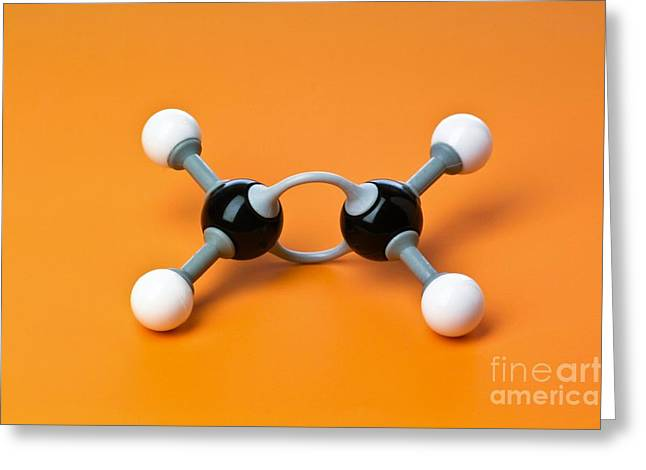 Organic Compound Greeting Cards - Ethene, Molecular Model Greeting Card by Martyn F. Chillmaid