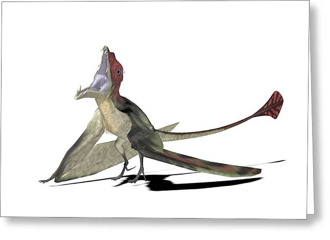 Eudimorphodon Pterosaur Greeting Card by Friedrich Saurer