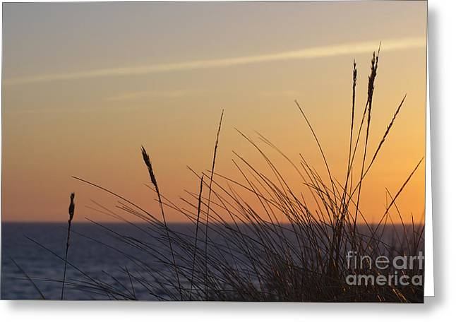 North Sea Greeting Cards - Evening Greeting Card by Angela Doelling AD DESIGN Photo and PhotoArt