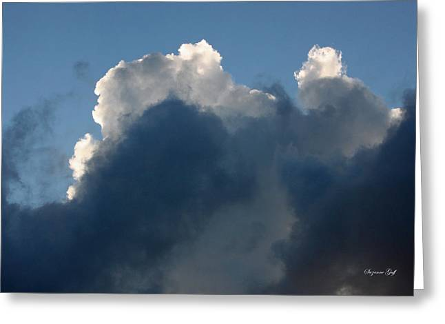 Backlit Prints Greeting Cards - Evening Drama II Greeting Card by Suzanne Gaff