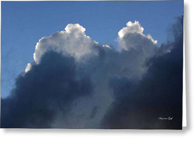 Backlit Prints Greeting Cards - Evening Drama Greeting Card by Suzanne Gaff