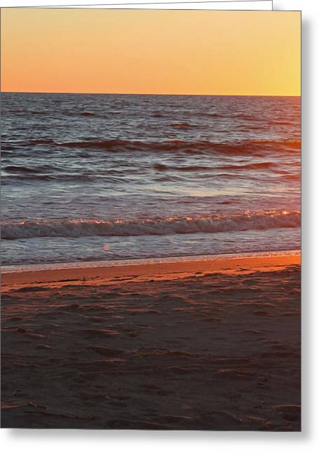 Sunset Posters Greeting Cards - Evening Light Greeting Card by Suzanne Gaff
