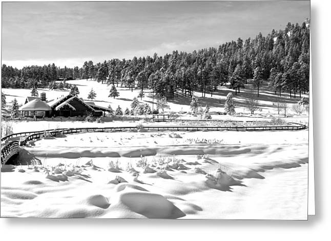 Lake House Greeting Cards - Evergreen Lake House Winter Greeting Card by Ron White