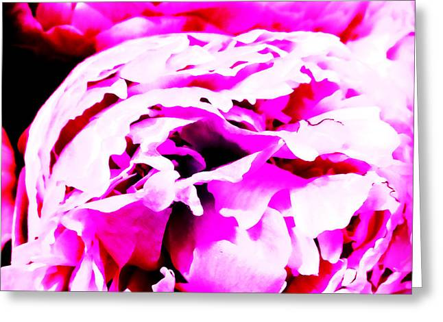 Stein Greeting Cards - Everyday Abstract 19 Greeting Card by Nancy E Stein