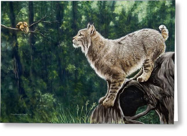 Bobcats Paintings Greeting Cards - Eye To Eye Greeting Card by Stephanie Funke- Sweeten
