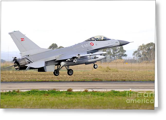 Danish Military Greeting Cards - F-16a Mlu Falcon From The Royal Danish Greeting Card by Riccardo Niccoli