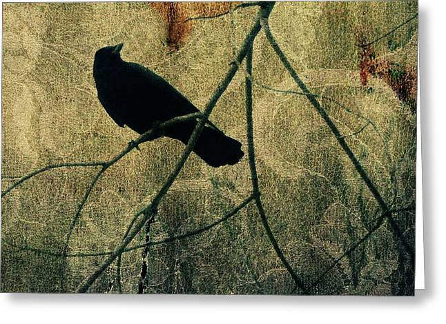 Fade  Greeting Card by Gothicolors Donna Snyder