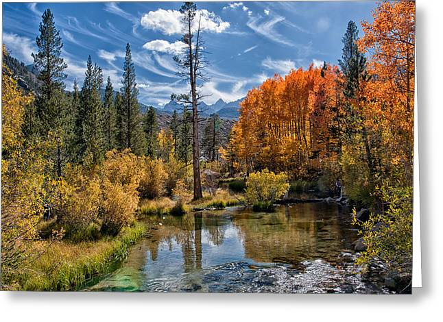 Fall At Bishop Creek Greeting Card by Cat Connor