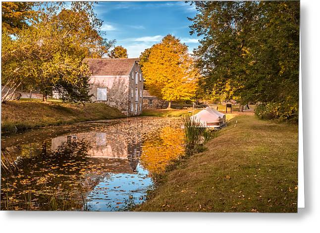 Generators Greeting Cards - Fall colors Greeting Card by Eduard Moldoveanu
