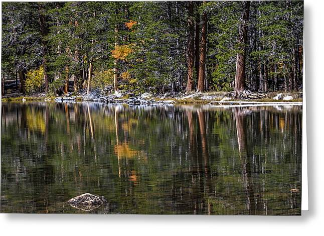 California Adventure Greeting Cards - Fall Reflections Greeting Card by Cat Connor