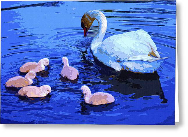 Swan Birth Art Greeting Cards - Family Greeting Card by Brian Stevens