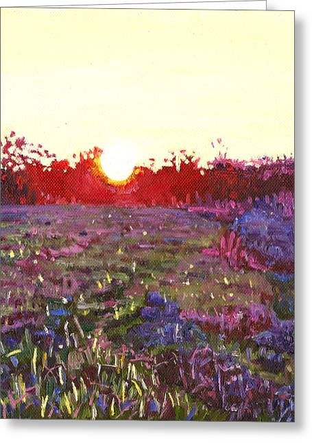 Wildflower Fine Art Greeting Cards - Farley sunset Greeting Card by Helen White