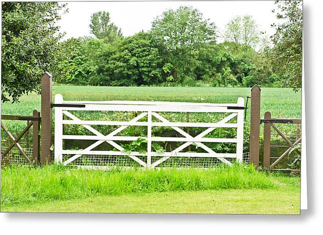 Owner Photographs Greeting Cards - Farm gate Greeting Card by Tom Gowanlock