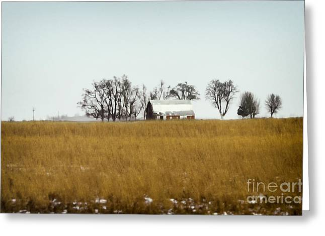 Pasture Scenes Greeting Cards - Farmland Greeting Card by Margie Hurwich