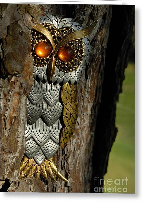 Animal Eyes Greeting Cards - Faux Owl with Golden Eyes Greeting Card by Amy Cicconi