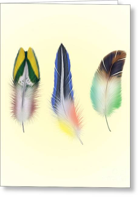 Feathers Greeting Card by Mark Ashkenazi
