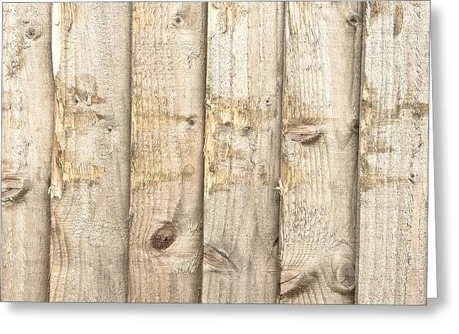 Torn Greeting Cards - Fence panels Greeting Card by Tom Gowanlock
