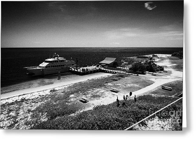 Dry Tortugas Greeting Cards - Ferry And Dock At Fort Jefferson Dry Tortugas National Park Florida Keys Usa Greeting Card by Joe Fox