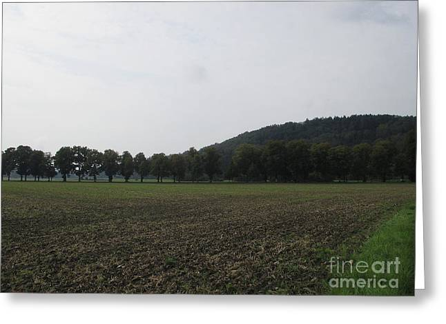 Pastureland Greeting Cards - Field near Munich Greeting Card by Chani Demuijlder