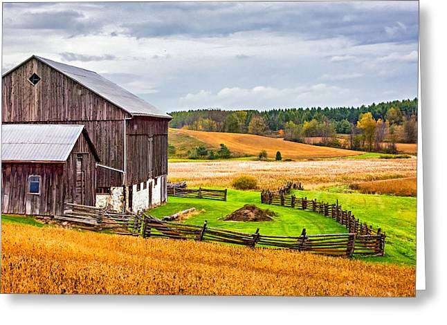 Photos Of Autumn Greeting Cards - Fields of Gold Greeting Card by Steve Harrington