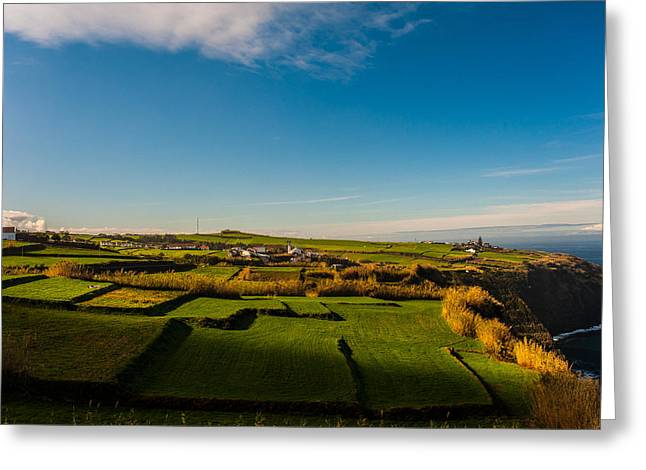 China Beach Greeting Cards - Fields of Green and Yellow Greeting Card by Joseph Amaral