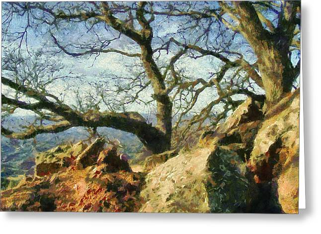 Nature Scene Greeting Cards - Figueroa  Mountain Trees Digital Watercolor Greeting Card by Barbara Snyder