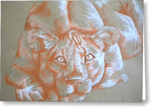 Ferocity Greeting Cards - Finding Security Greeting Card by Molly Wilson