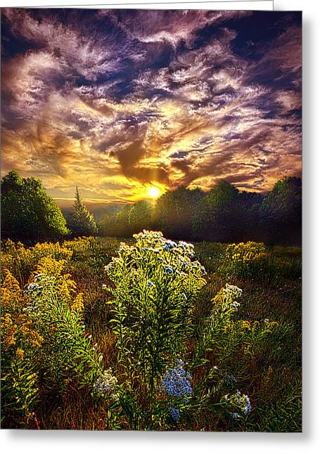 Sunrise Greeting Cards - First Light Greeting Card by Phil Koch