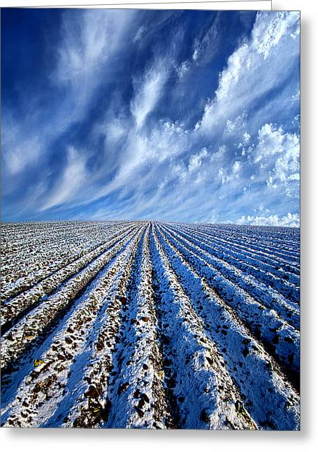 Snow Path Greeting Cards - First Snow Greeting Card by Phil Koch
