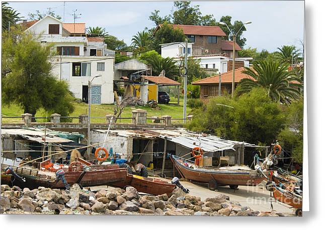 Uruguay Greeting Cards - Fish Camp, Uruguay Greeting Card by William H. Mullins