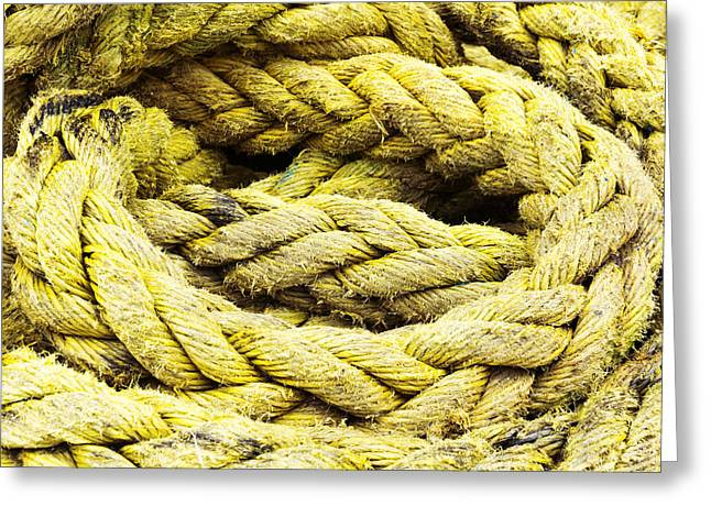 String Tie Greeting Cards - Fishing Rope Textures Greeting Card by Mikel Martinez de Osaba