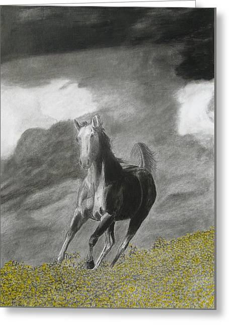 Horse Images Drawings Greeting Cards - Fleeing the Storm Greeting Card by Steve Keller