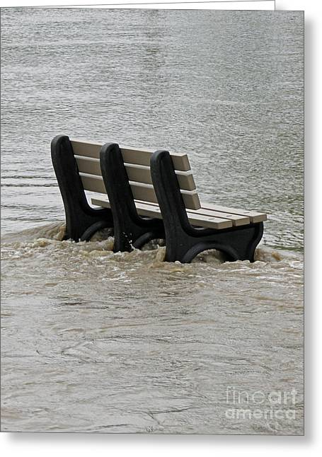 River Flooding Greeting Cards - Flooded Seat  Greeting Card by Jamie  Smith