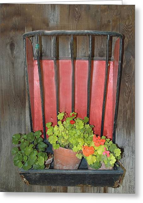 Winery Photography Greeting Cards - Flower Pots Greeting Card by Barbara Snyder