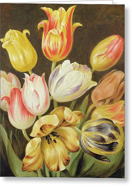 Yellow And Red Greeting Cards - Flower Study Greeting Card by Johann Friedrich August Tischbein