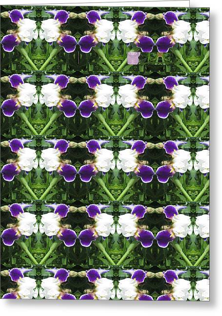 Gay Relationship Greeting Cards - Flowers from CherryHILL NJ America White  Purple Combination Graphically Enhanced Innovative Pattern Greeting Card by Navin Joshi