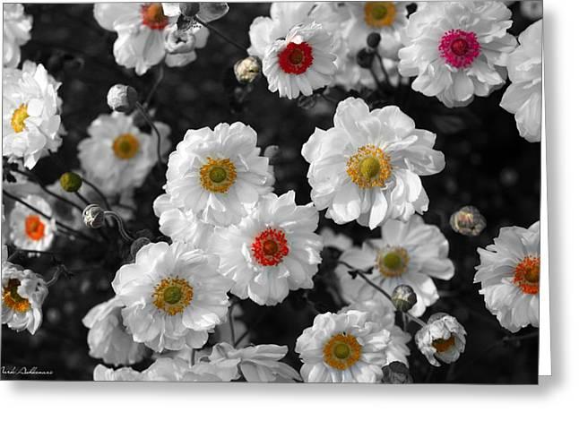 Emotive Greeting Cards - Flowers  Greeting Card by Mark Ashkenazi