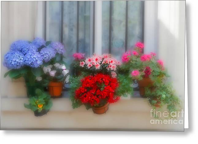 Red Geraniums Greeting Cards - Flowers on a Windowsill in Paris Greeting Card by Louise Heusinkveld