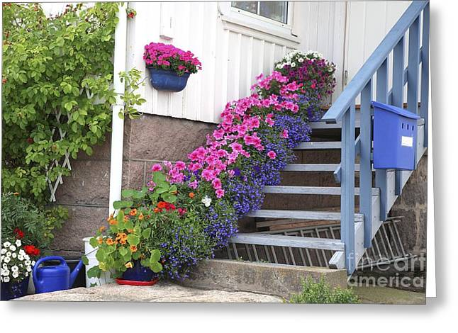 Wooden Stairs Greeting Cards - Flowers On Porch Stairs Greeting Card by Bjorn Svensson