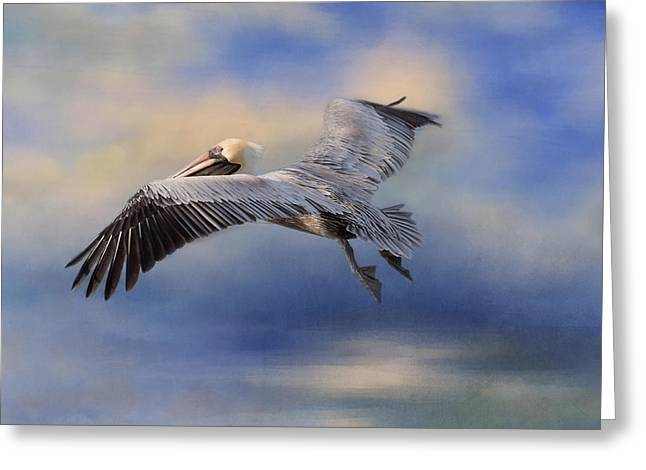 Seabirds Greeting Cards - Fly Away Greeting Card by Kim Hojnacki