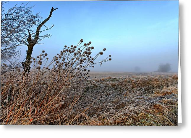 Green Day Greeting Cards - Fog Greeting Card by Kent Mathiesen