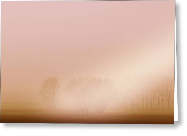Fantasy Tree Greeting Cards - Foggy Morning Greeting Card by Franziskus Pfleghart